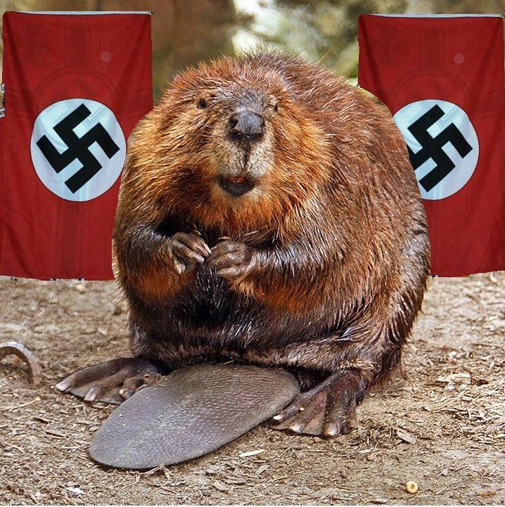 Evil Beaver Belarus Killer