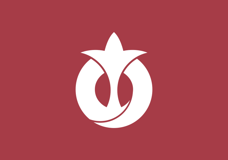 Japan Flags Aichi Prefecture