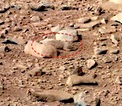 Squirrel On Mars - Nasa Rover Photo
