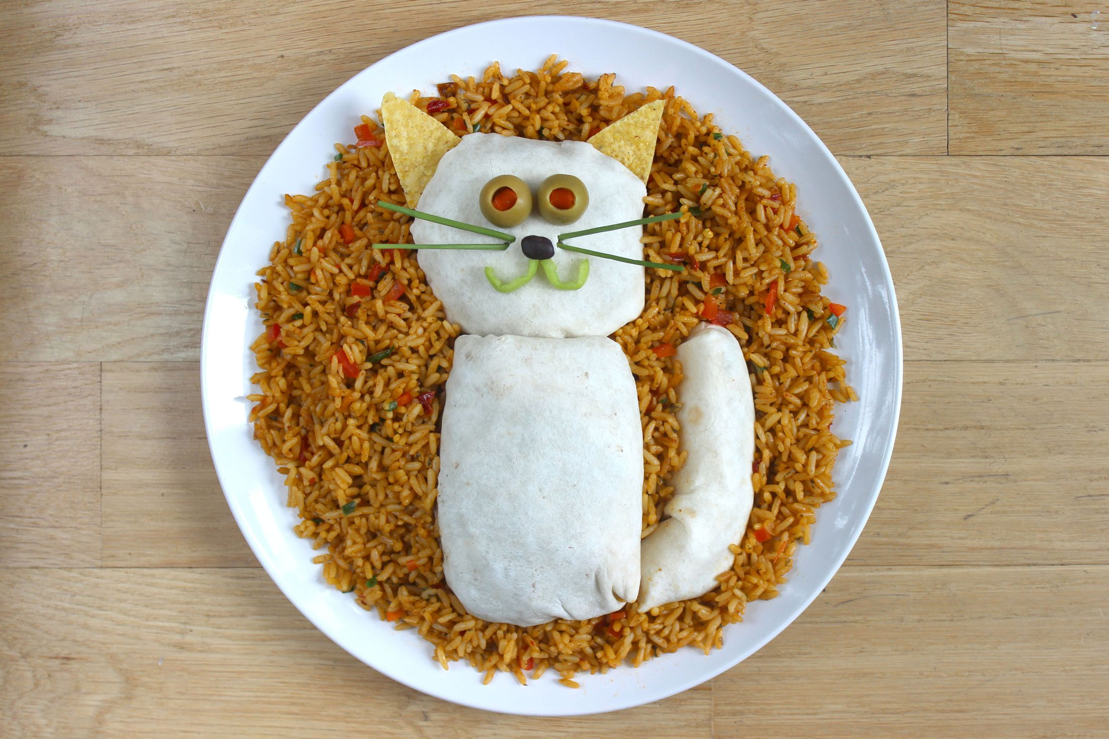 Kasia Haupt - Sanwich Art Sculpture - Cat Burrito