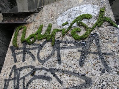 Moss Graffiti - Text - The New School