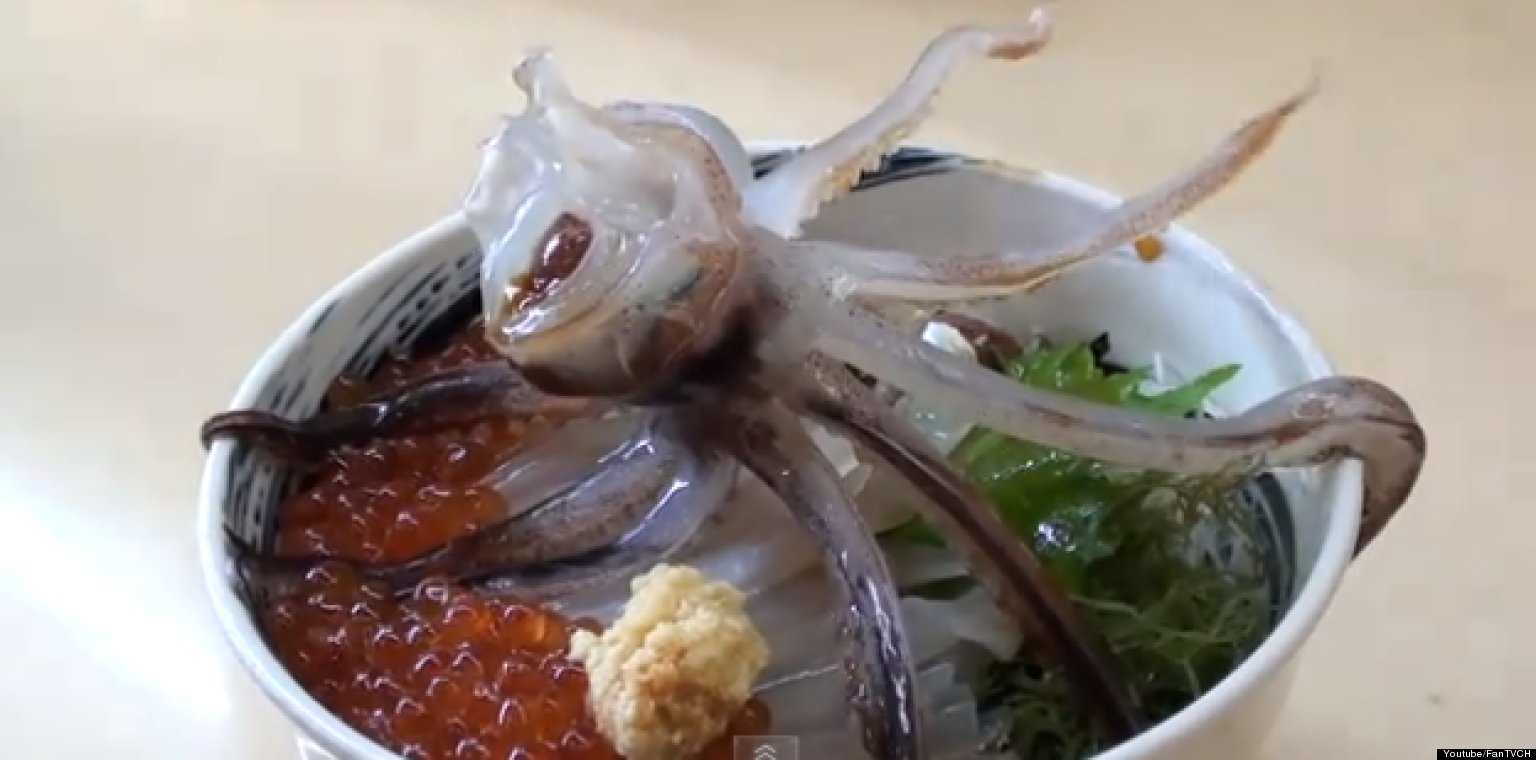 Dancing Squid - Japan Ori Don - Cuttlefish Zombie
