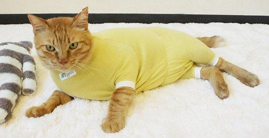 Japan Trend Shop - Egree Cat Pyjamas