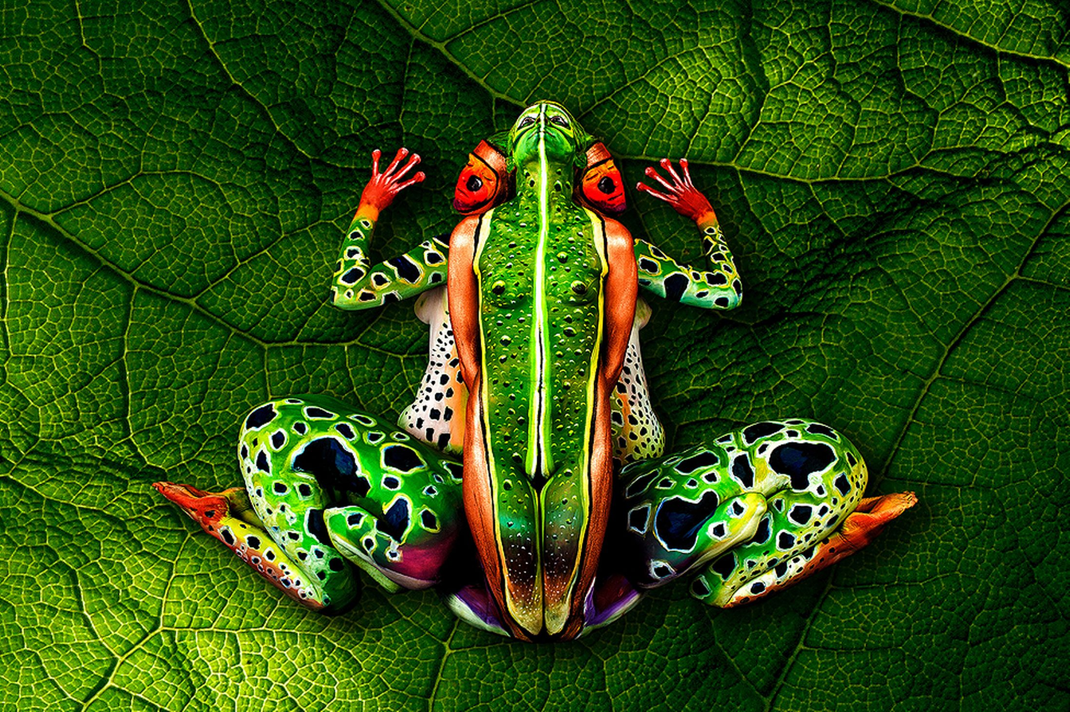 Johannes Stoetter - Body Painting Champion - Frog