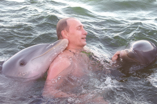 Putin Looking Like Hero James Bond - Swimming With Dolphins
