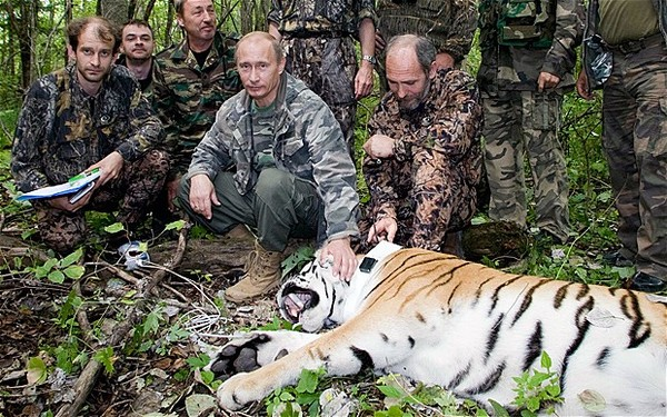 Putin Looking Like Hero James Bond - With Tiger