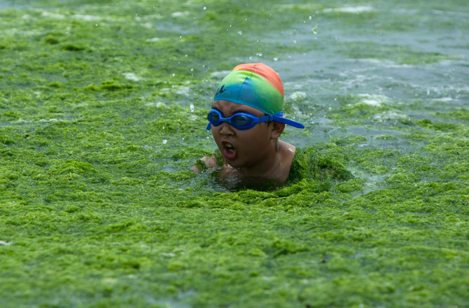 Qingdao - Algae Beach - China - Holiday - Kid Swimmer