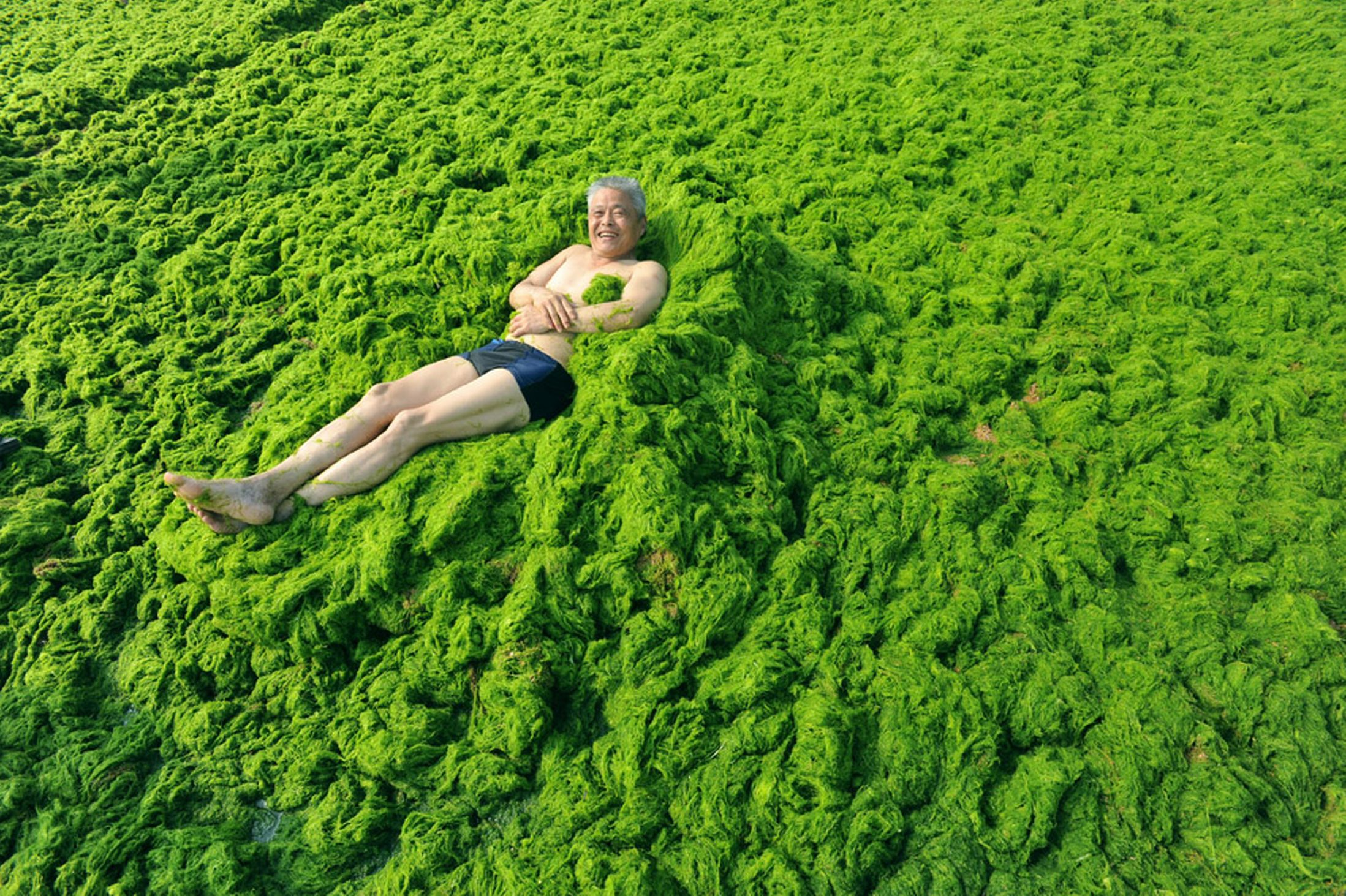 Qingdao - Algae Beach - China - Holiday - Old Man Chilling In Slime