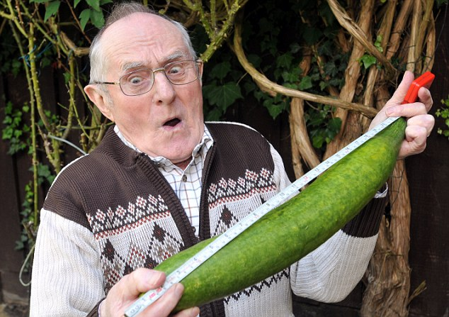 Big Vegetable - Photo Collection - Monster Vegetable - Giant Cucumber - Gorden Spence 2