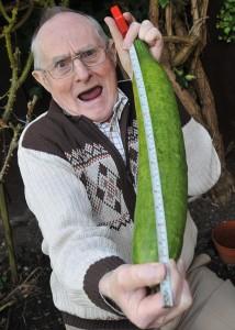 http://lazerhorse.org/wp-content/uploads/2013/09/Big-Vegetable-Photo-Collection-Monster-Vegetable-Giant-Cucumber-Gorden-Spence-2-214x300.jpg