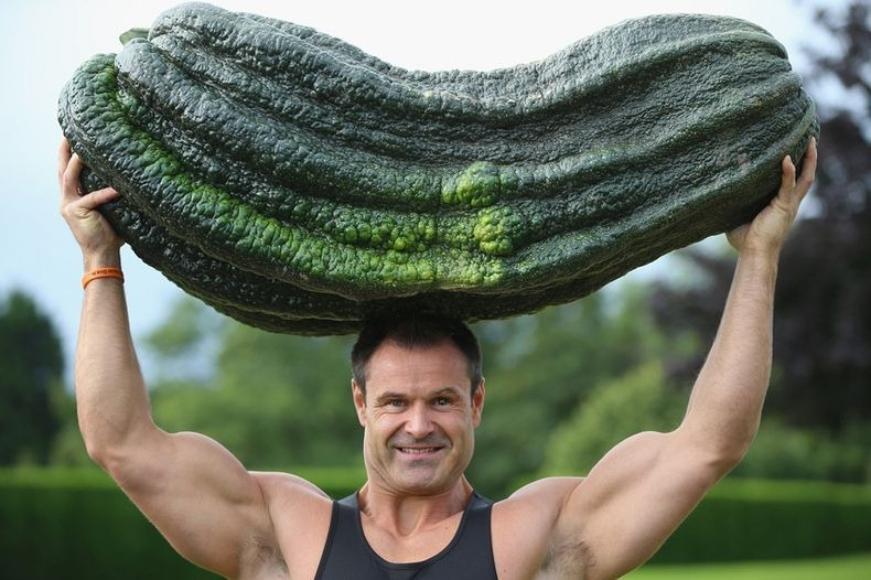 Big Vegetable - Photo Collection - Monster Vegetable - Giant Marrow - Peter Glazebrook