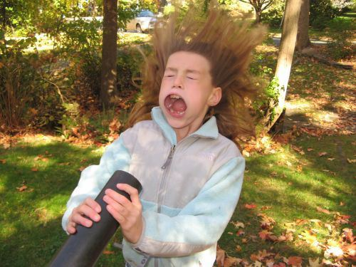 Funniest Pics Ever Best Lol- Leaf Blower In Face