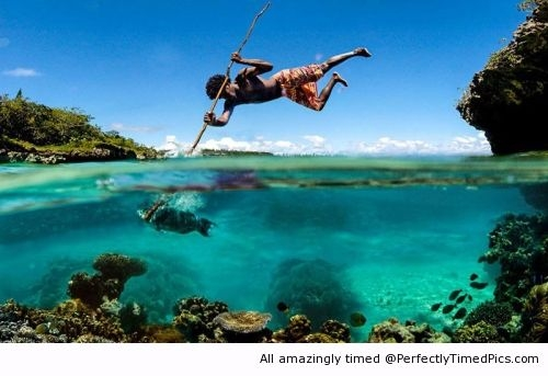 Funniest Pics Ever Best Lol- Spear Fishing