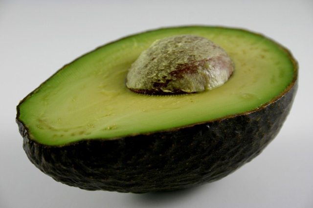 History of the Avocado - Close Up