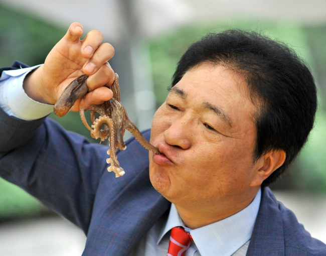 South Korea - Food Festival - Eating Live Octopus - Asian Man
