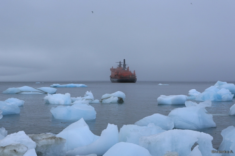 Arctic Voyage  - 2013 - Photo Collection - Ice Field