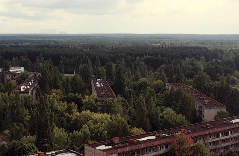 Chernobyl - Prypiat - Wildlife - Radioactive - Town Today