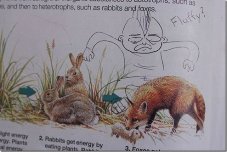 Defaced Text Books - Humour - Fluffy The Bunny