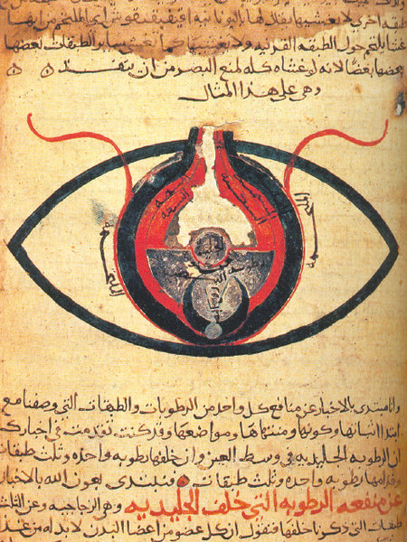 Amazing Beautiful Old Biology Science Drawings - 1200 Anatomy of the Ey - al-Mutadibih.