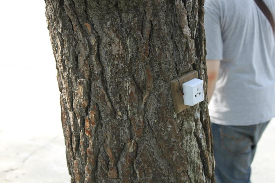 Inside North Korea - Tree Plug