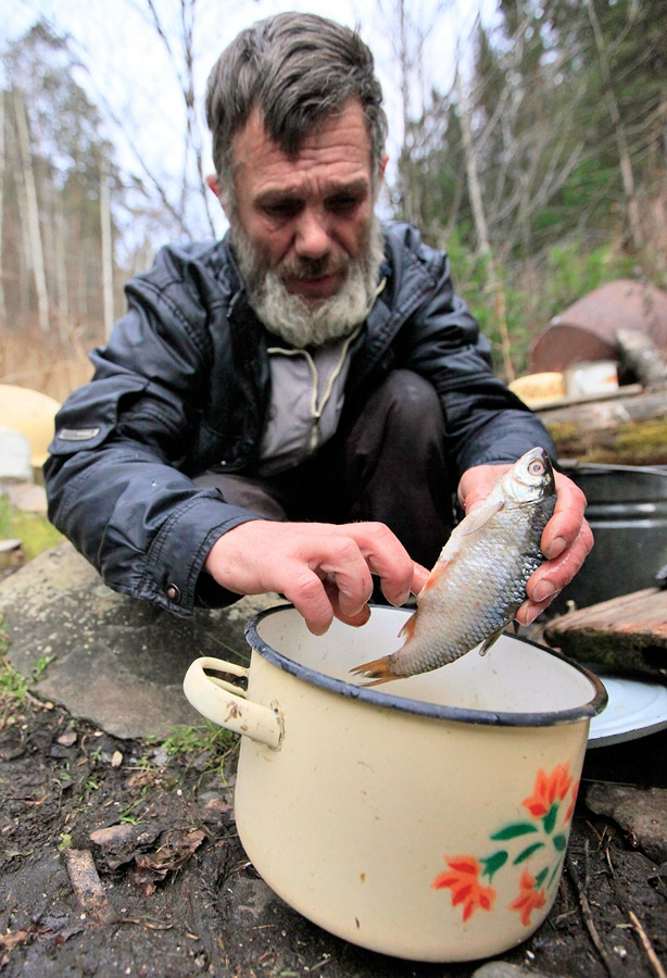 Siberian Hermit - Victor - Russia - Eating Fish