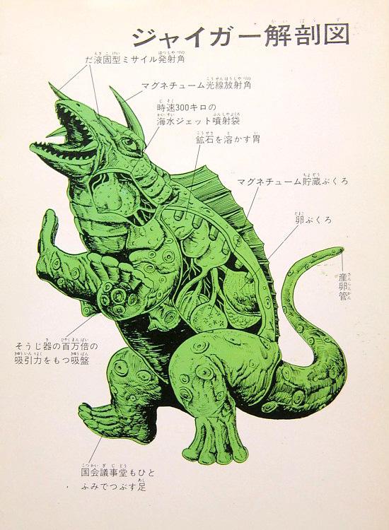 Gamera - Japan Cartoon Anatomy - Jiger