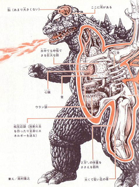 Japanese Monsters - Film - Anatomy Godzilla