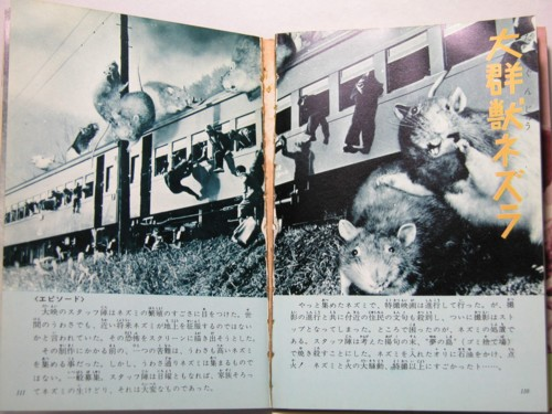 Japanese Monsters - Film - Train Rats