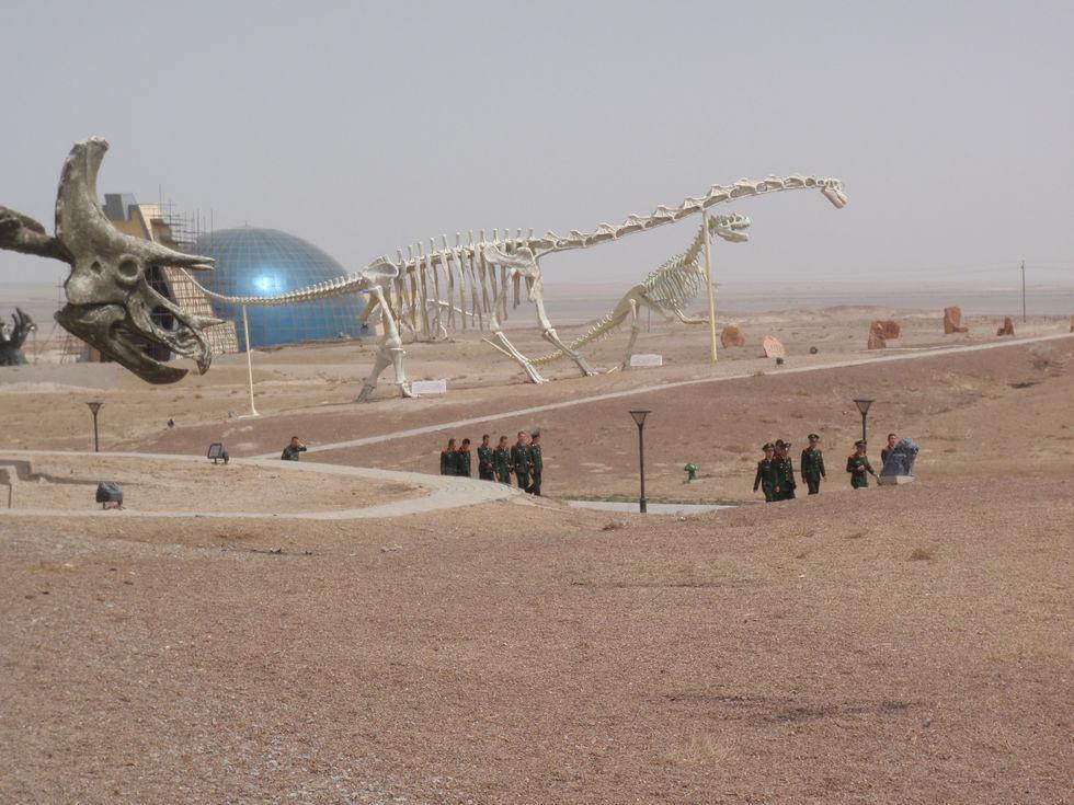 Dinosaur Fairly Land China Mongolia - Triceratops Army